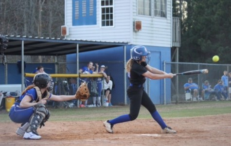Softball enters new season looking to build from previous