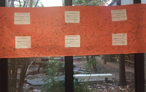 Students signatures pledging to fight bullying