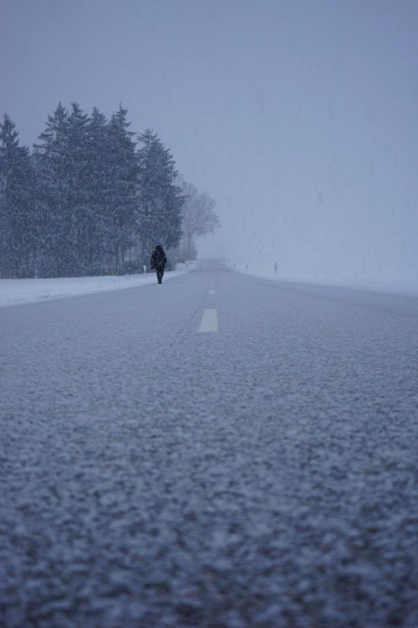 This picture captures what it would feel like to walk through a snow storm.