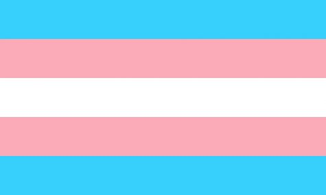 The Transgender flag was designed in 1999 by a trans woman. The blue and pink stripes represent the traditional colours for boys and girls, respectively. The white stripe represents intersex, transitioning, or neutral gender.